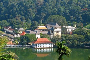 Excursion d'une journée à Kandy avec visite de l'orphelinat des...