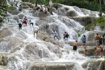 Dunn's River Falls and Luminous Lagoon Tour from Montego Bay and...
