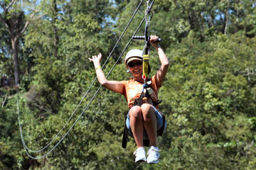 Falmouth Shore Excursion: Zipline Canopy plus Montego Bay City Highlights