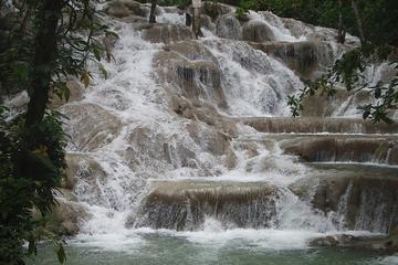 Gita giornaliera privata alle cascate del fiume Dunn da Montego Bay e