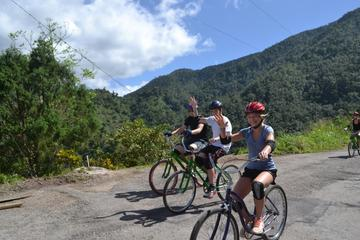 Private Bicycle Tour of Jamaica's...