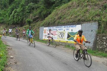 Private Bicycle Tour of Jamaica's Blue Mountains from Negril and...