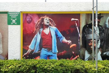 Private Full-Day Bob Marley Excursion from Falmouth
