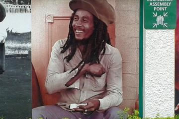 Private Full-Day Bob Marley Excursion...