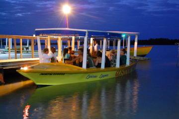 Tour della laguna luminosa da Montego Bay e Grand Palladium