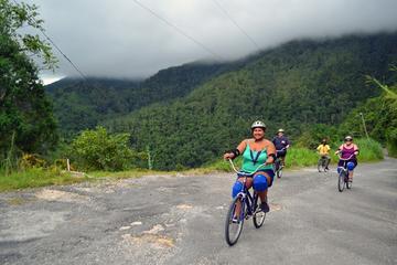 Tour in bici delle Montagne blu della Giamaica da Montego Bay