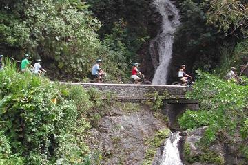 Tour privato in bici delle Montagne blu della Giamaica da Montego Bay