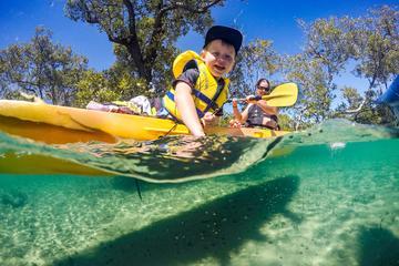 Half-Day Gold Coast Kayak Tour...