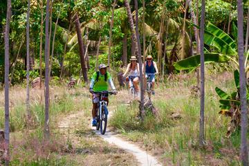 Half-Day Explorer Tour of Koh Phangan