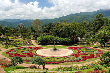1 Day Car Tour 4: Visit Doi Tung...