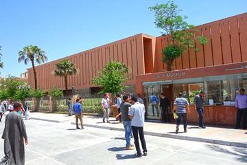 Tagestour zum Luxor Museum und...