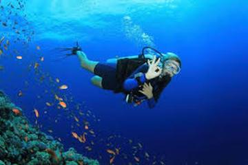 PADI Open Water Kurs auf Gran Canaria