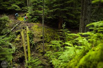 Mountain Biking near Olympic National...