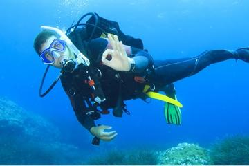 Beginner Scuba Diving Course with Lunch in Cozumel