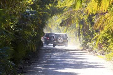 Excursión en jeep en Cozumel con buceo de superficie en Punta Sur y...