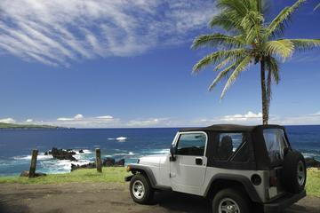 Excursión en jeep en Cozumel: Punta Sur y descanso en la playa con...