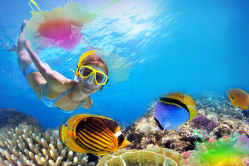 Unlimited Snorkeling and Beach Break with Lunch in