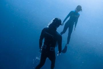 Discover Freediving Program in Punta...