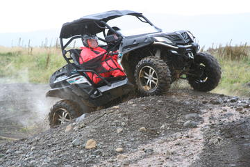 One-Hour Buggy Adventure from...