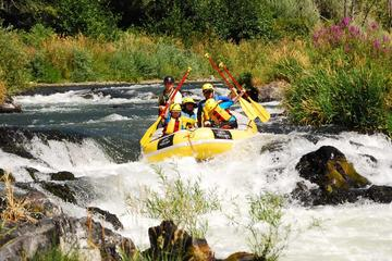 Day Trip Half-Day Rogue River Rafting near Ashland, Oregon