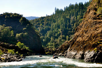 Day Trip Rogue River Multi-Day Rafting Trip near Galice, Oregon
