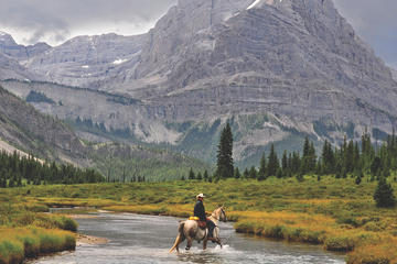 6-Day Cascade Valley Backcountry Tent Trip by Horseback