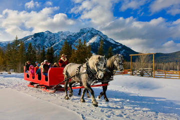 Banff Horse-Drawn Sleigh Ride