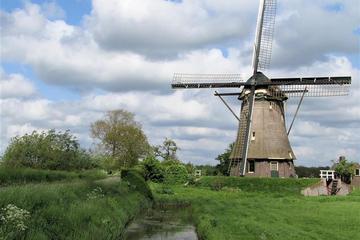 Private geführte Fahrradtour zu den niederländischen Windmühlen