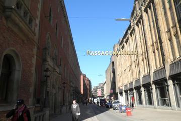 Hamburg Old Town: Historic City Center Walking Tour