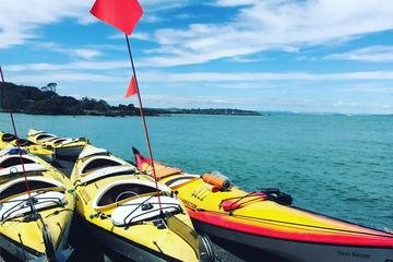 Auckland Rangitoto Island Guided...