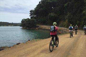 Leisure Bike Tour on Waiheke Island...