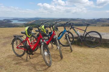 Leisure e-Bike Tour on Waiheke Island - departing from Auckland City
