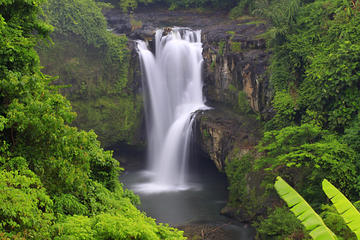 Best of Central Bali: Waterfall...