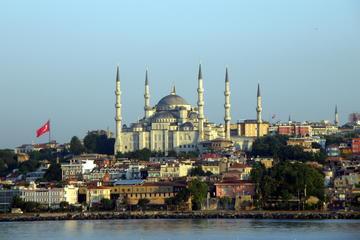 Recorrido por la ciudad de Estambul para grupos pequeños: Mezquita...