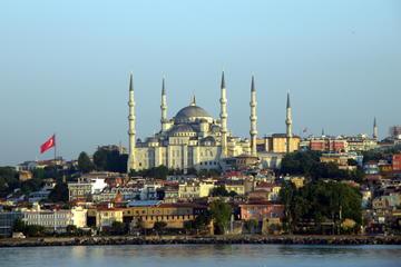 Tour per piccoli gruppi di Istanbul: Moschea blu, ippodromo, Gran