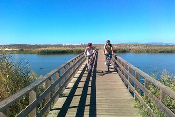 A costa de Albufeira e excursão de bicicleta na zona rural