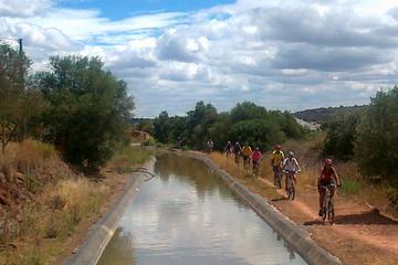 Alcantarilha - Silves Mountain Bike...
