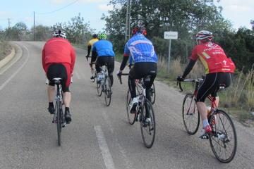 Excursão de bicicleta ao centro de Algarve