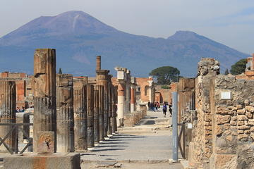Full-Day Tour Vesuvius Herculaneum