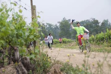 Visite en vélo et découverte des vins à Cousiño Macul