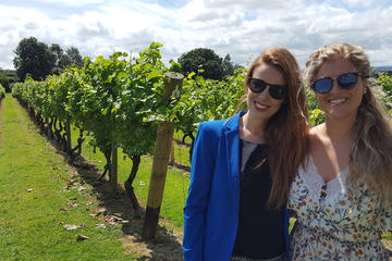 English Wine Tasting Tour to Sussex...