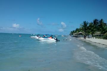 Excursión de un día a Praia dos Carneiros desde Boa Viagem, Pina o...