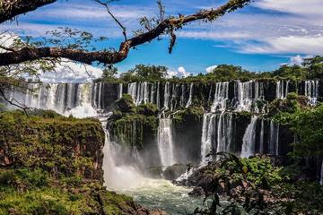 14-Day Argentina Discovery Tour