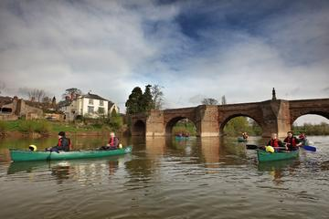 Full-Day Guided Canoe and Photography Safari in the Wye Valley from...