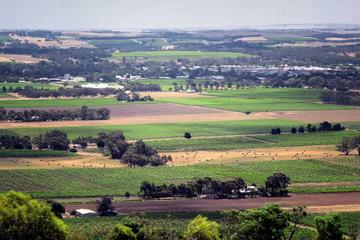Northern Barossa Valley Small Group Day Trip from Adelaide or Glenelg