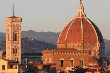 Excursión guiada para conocer la Galería de los Uffizi y la Academia