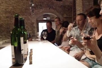 Tour privado para conocer el vino y...