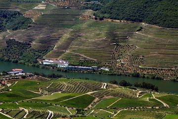 Douro Breathtaking Landscapes Small Group Tour with Lunch and Wine...