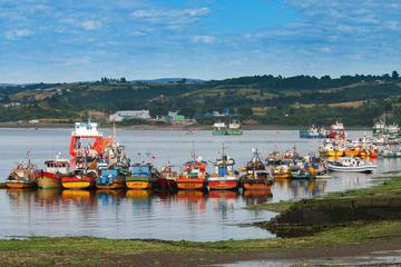 Excursão de Dia Inteiro: Chiloe Istand incluindo Ancud, Castro e...