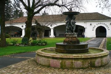 Excursão vinícola em Undurraga a partir de Santiago